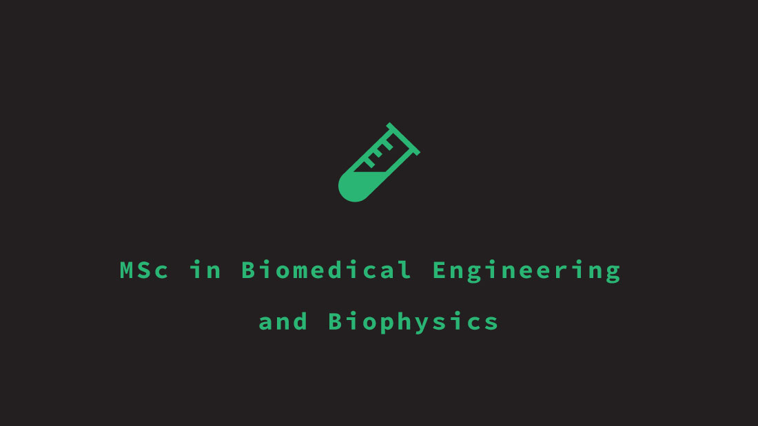 Master in Biomedical and Biophysics Engineering