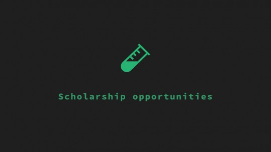 scholarship_opportunities